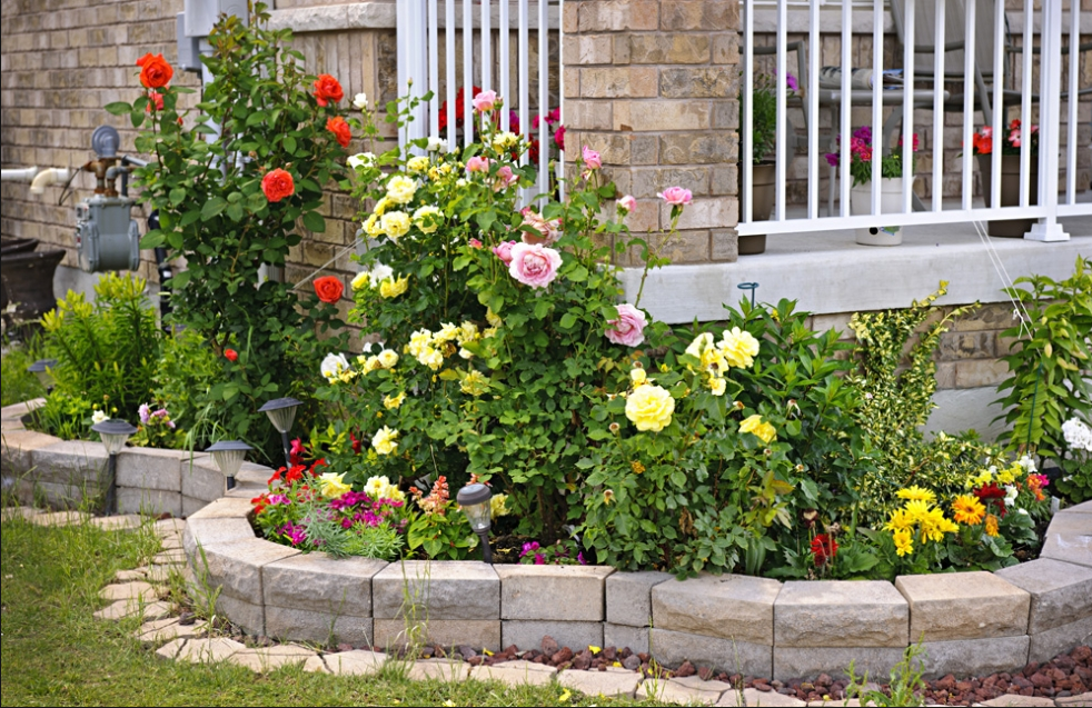 Ландшафтный дизайн клумбы с розами